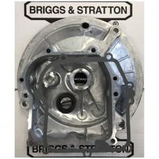 Karteris Briggs & Stratton 450E, 500 590569