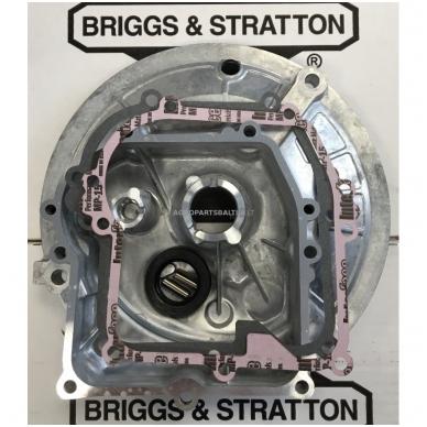 Karteris Briggs & Stratton OHV 594101