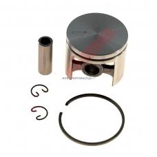 Stūmoklio komplektas Alpina, Castor, išmatavimai cilindro mm 42, modeliams: 450