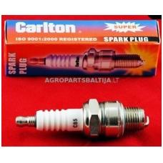 Uždegimo žvakė Carlton SCR10G